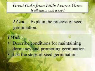 Great Oaks from Little Acorns Grow It all starts with a seed