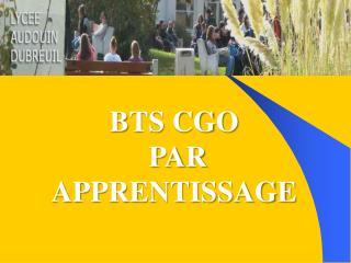 BTS CGO  PAR APPRENTISSAGE
