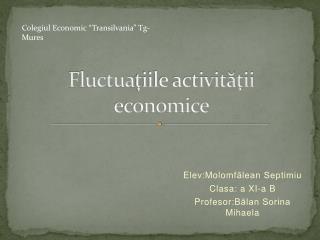 Fluctua ţiile activităţii economice