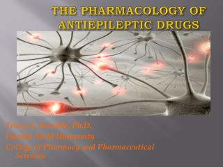 The Pharmacology of ANTIEPILEPTIC DRUGS