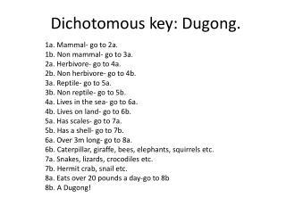 Dichotomous key: Dugong.