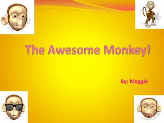 The Awesome Monkey!