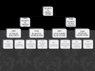 DIEZEL FINAL PEDIGREE FAMILY TREE