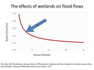 The effects of wetlands on flood flows