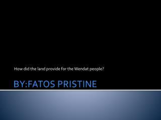 BY:FATOS PRISTINE