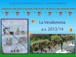 La Vendemmia a.s.  2013/14