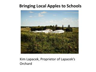 Bringing Local Apples to Schools