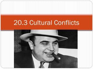 20.3 Cultural Conflicts