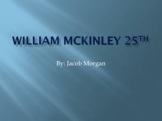 William  McKinley 25 th