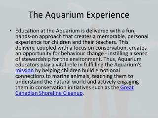 The Aquarium Experience