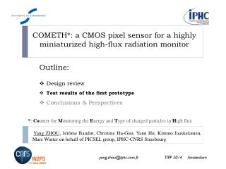 COMETH*: a  CMOS  pixel sensor for a highly miniaturized high-flux radiation monitor