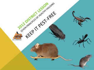 2012 District Lesson Seven  Principles of  Healthy  Housing KEEP IT pest-free
