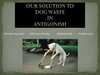 Our solution to  dog waste  in  antigonish