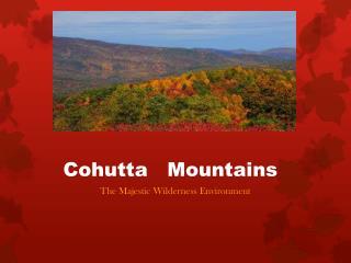 Cohutta    Mountains