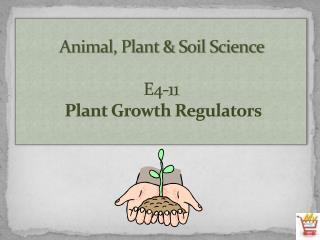 Animal, Plant & Soil Science E4-11  Plant Growth Regulators