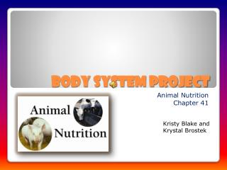 Body System Project