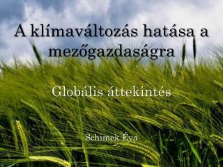 A klímaváltozás hatása a mezőgazdaságra