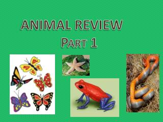 ANIMAL REVIEW             Part 1
