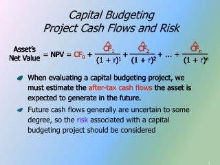 Capital Budgeting Project Cash Flows and Risk