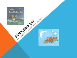 BumbleBee  Bat
