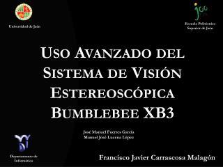 Uso Avanzado del Sistema de Visión Estereoscópica  Bumblebee  XB3