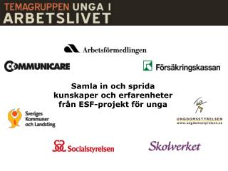 Samla  in och sprida kunskaper  och erfarenheter från ESF-projekt för unga