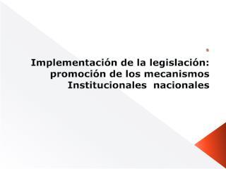Implementación de la legislación: promoción de los mecanismos Institucionales  nacionales