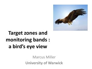 Target zones and  monitoring bands :  a  bird's eye  view