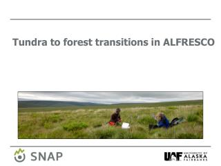 Tundra  to  forest transitions in ALFRESCO