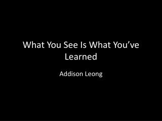 What You See Is What You've Learned