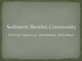 Sediment/Benthic Community