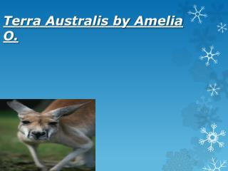 Terra Australis by Amelia O.