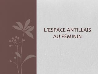 L'espace antillais au f éminin