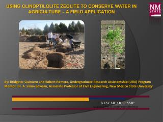 Using Clinoptilolite Zeolite to Conserve Water in Agriculture ~ A Field Application