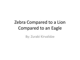 Zebra Compared to a Lion Compared to an Eagle