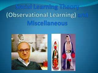 Social Learning Theory  (Observational Learning)  and Miscellaneous