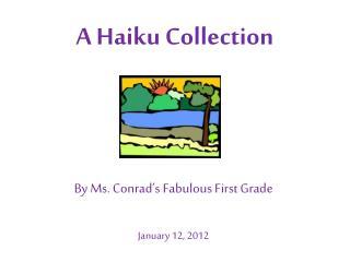 A Haiku Collection