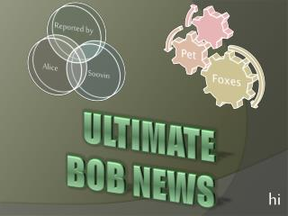 ULtIMATE BOB NEWS