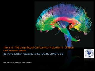 Effects of  rTMS  on Ipsilateral  Corticomotor  Projections in Children with Perinatal  Stroke: