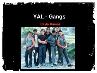 YAL - Gangs