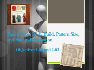 Figure Type, Body Build ,  Pattern  Size, and Pattern Information