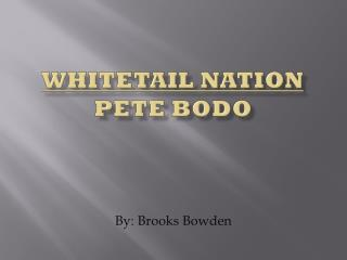 Whitetail nation Pete  Bodo