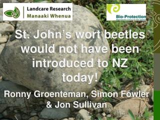 St. John's  wort  beetles would not have been introduced to NZ today!