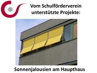 Vom Schulf�rderverein unterst�tzte Projekte: