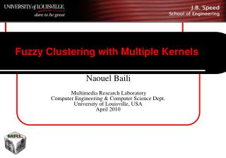 Fuzzy Clustering with Multiple Kernels