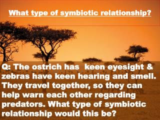 What type of symbiotic relationship?