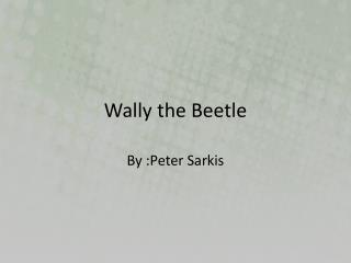 Wally the Beetle