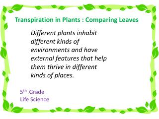 Transpiration in Plants : Comparing Leaves
