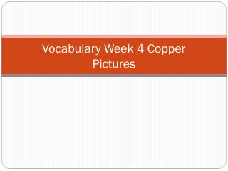 Vocabulary Week  4  Copper  Pictures