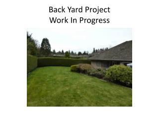 Back Yard Project  Work In Progress